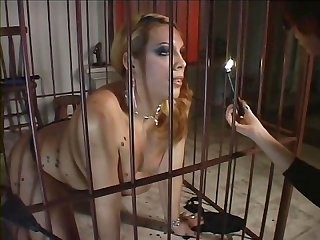 Transsexual Videos