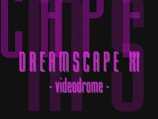 Dreamscape 11 videodrome