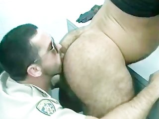 Gratis homo Bears fucked and sucked Part3