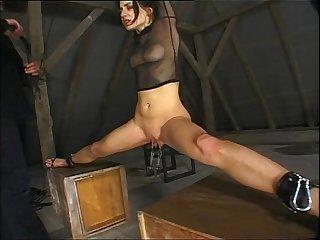 Fmd 462 01