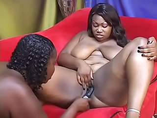 Lesbian BBW honey Ginger Haze rides her girlfriend Lady Finesse's strap on reverse cowgirl