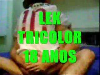 Lek tricolor enrabado por flamenguista