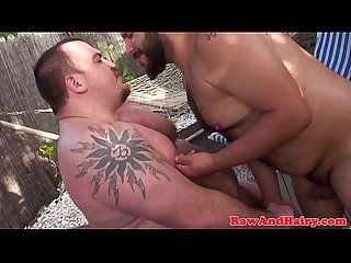 Heavyset bears love to breed outdoors