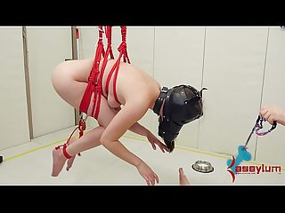 Doggie girl gets rough anal punishment and humiliation