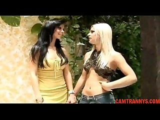 Tgirl lesbians carla thays free shemale porn 68 camtrannys com