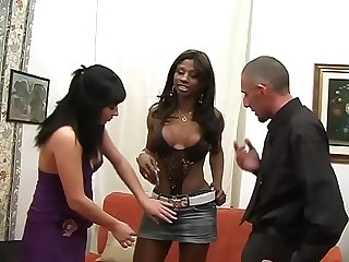 Gang banged by sensual transsexuals vol 2