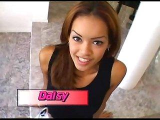 Latina daisy marie pov