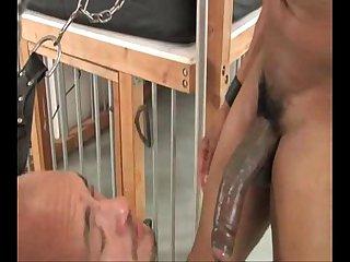 Ass wrecker
