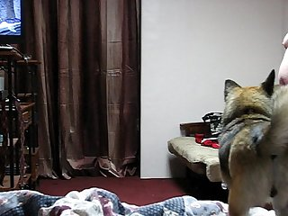 Bedroom Spy